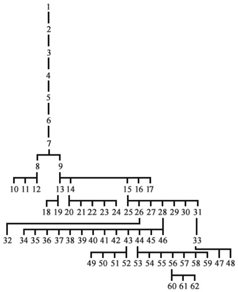 The family tree of first Matusheviches/Matuseviches